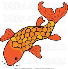 koi fish clipart clipground