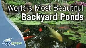 Backyard Pond Images World U0027s Most Beautiful Backyard Ponds Youtube