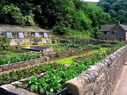 building a vegetable garden in florida the garden inspirations