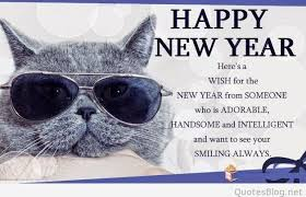 Happy New Year Cat Meme - list of synonyms and antonyms of the word happy new year 2015 cat