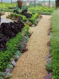 185 best paths and succulents images on pinterest succulents
