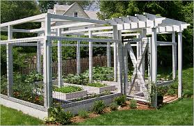 incredible enclosed garden unique design garden netting protect