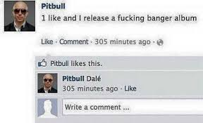 dopl3r com memes says pitbull 1 like and i release a fucking