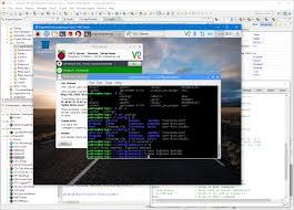 vnc client for windows vnc server on raspberry pi with autostart mcu on eclipse