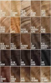 24 In Human Hair Extensions by 24 Inch Clip In Hair Extensions 100 Human Remy Hair