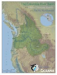 750 Meters To Feet by Dams Are Wiping Out Chinook Salmon U2014 And Decimating Killer Whales