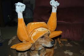 turkey costumes for dogs costume model ideas
