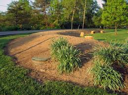Ideas 4 You Front Lawn Landscaping Ideas To Hide Septic Lids Nothing Stops A Mantis Septic Mound Landscaping Ideas
