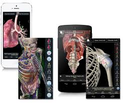 essential anatomy 3 u2013 3d4medical