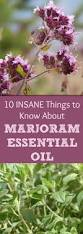 11 insane things you must know about marjoram essential oil why