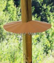 Backyard Wild Birds Cylinder Raccoon Baffle For Poles At Backyard Wild Birds Garden