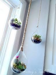 best 25 succulent terrarium ideas on pinterest diy terrarium