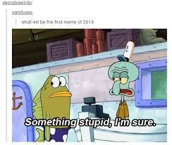 Memes Of 2014 - something stupid memes know your meme