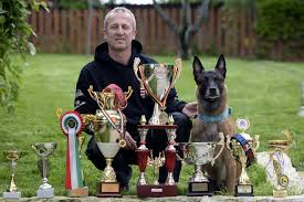 belgian shepherd video a hungarian dog won the world championship for belgian shepherds