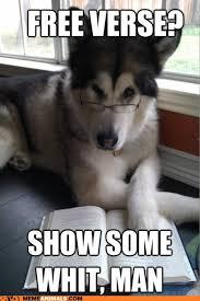 Meme Puns - i can has cheezburger condescending literary pun dog funny