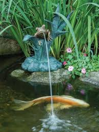 best 25 pond spitters ideas on koi pond supplies koi