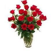 Tallahassee Flower Shops - esposito garden center florists 2743 capital cir ne