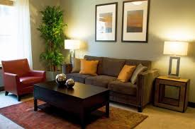 living room ideas for apartment cool decoration ideas for living room in apartments lilalicecom