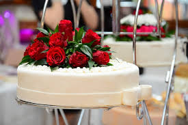 cake delivery online feasibility of online cake delivery services gift
