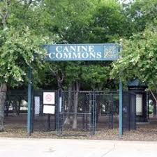allen north target black friday canine commons dog park 16 photos u0026 21 reviews dog parks 190