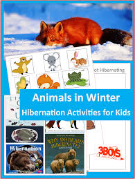 printable animal activities animals in winter hibernating printable 3 boys and a dog