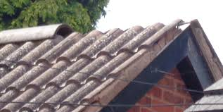 Flat Concrete Roof Tile Broken Or Slipped Ridge Tiles Dyson Roofing Roof Repairs And