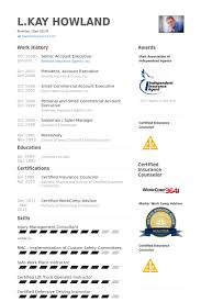 Executive Resume Sample by Senior Account Executive Resume Samples Visualcv Resume Samples
