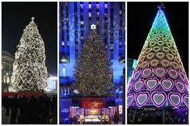 best christmas tree which city has the best christmas tree see how liverpool compares