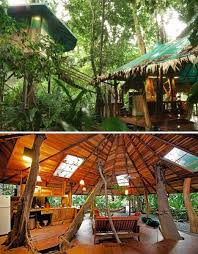 Tree House Home Best 25 Treehouse Vacations Ideas On Pinterest Tree House