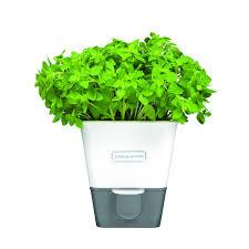 herb cole u0026 mason self watering single herb keeper cole u0026 mason uk