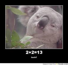 Koala Meme Generator - high koala meme
