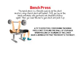bench press 856fitness com