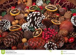 potpourri christmas potpourri stock image image of fragrant pinecone