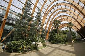 24 best winter gardens images on pinterest winter garden