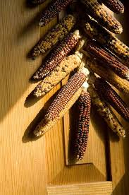 diy ideas for indian corn to decorate your house this fall