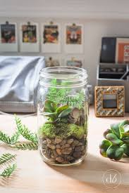 Mason Jar Home Decor Ideas Best 25 Mason Jar Terrarium Ideas On Pinterest Mason Jar