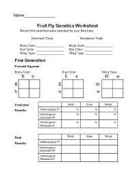 genetics pedigree worksheet answers 28 templates pedigree