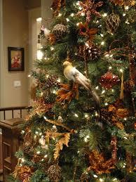 decoration phenomenal decorating christmas trees ideas