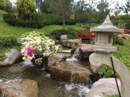 imagenes de jardines japones jardin japones picture of jardines de mexico jojutla tripadvisor