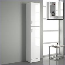 Cheap Storage Cabinets With Doors Furniture Fabulous 12 Deep Storage Cabinet Large Storage