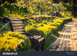 bench alley park on sunny day stock photo 139571648 shutterstock