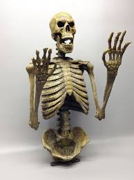 Animated Halloween Skeleton by Realistic Skeleton Torso Skeleton Halloween Prop Dcprops