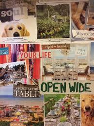 texas coast beach house news for port aransas and galveston pet