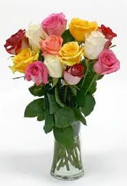 Vase With Roses Kroger One Dozen Mixed Roses W Free Vase Cincinnati Oh 45202