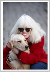 History Of The Blind Guide Dogs For The Blind Golden Retriever As The Favorite One