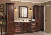 ideas for bathroom cabinets bathroom cabinets design home decorating ideas