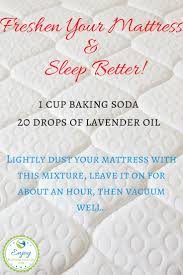 best 25 freshen mattress ideas on pinterest homemade spider