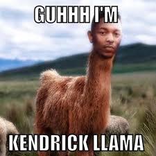Images Memes - the funniest llama memes llama del rey kendrick llama and more
