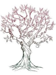 tree sketch 4evertree pinterest tree sketches sketches and