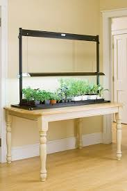 Fluorescent Light For Plants Fluorescent Grow Light Systems For Seed Starting Growing Tomatoes